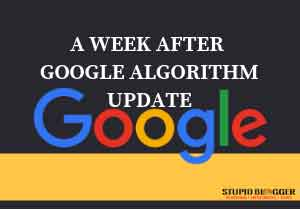 A-WEEK-AFTER-GOOGLE-ALGORITHM-UPDATE