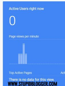 When google analytics show you middle finger