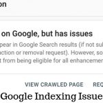 Google Indexing Issue