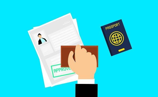 Visa-www.stupidblogger.com-
